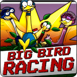 Big Bird Racing