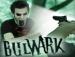 Bulwark 53