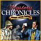 Mystery Chronicles Murder Among Friends gratis downloaden