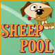 Sheep Pool